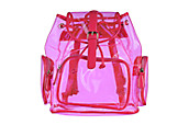 Transparent Backpack
