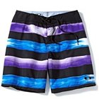 "Oakley Crashing Wave Boardshorts 19"" Inseam - 481742-01K"