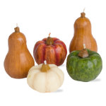 Autumn Harvest Gourd & Pumpkin Mini Candle Set of 5