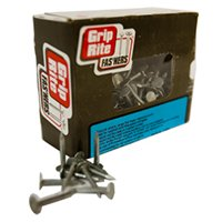 Galvanized Nails 1 in (255 per box)