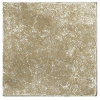 Antalya Noce Tumbled 12 x 12 in
