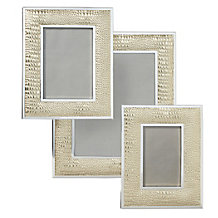 Everglades Frame - Gold