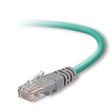 Belkin Cat 5e UTP Bulk Cable