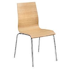 Zuo Modern Tierra Chair 36 H