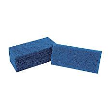 Doodlebug Blue Scrub Pad 4 35
