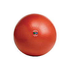 GoFit Professional Stability Ball With Core