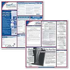 ComplyRight FederalState Labor Law Posters Kit
