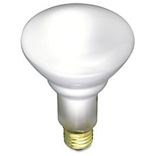 Satco 65 watt Incandescent Floodlight Frosted
