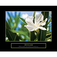 Crystal Art Gallery Framed Art Dream