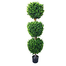 Pure Garden 60 H Rubber Hedyotis