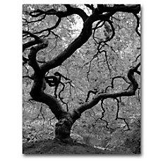 Trademark Global Japanese Tree II Gallery