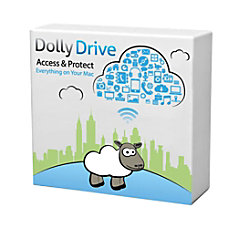 DollyDrive Online Backup Sync and Cloud