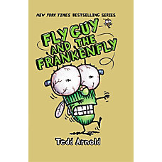 Scholastic Reader Fly Guy 13 Fly