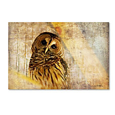 Trademark Global Owl Gallery Wrapped Canvas
