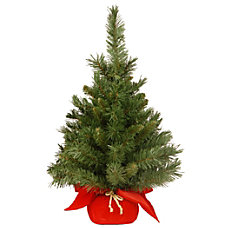 Majestic Fir Tree 2H x 18