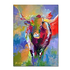 Trademark Global Longhorn Gallery Wrapped Canvas