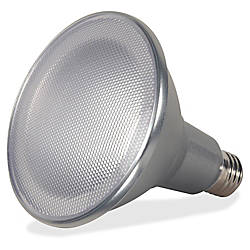 Satco 15 Watt PAR38 LED Bulb