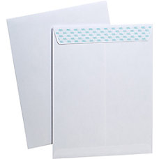 Ampad SafeSeal Heavyweight Security Envelopes Security