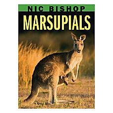 Scholastic Marsupials