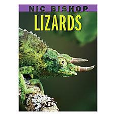 Scholastic Lizards