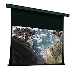 Draper Premier Electric Projection Screen