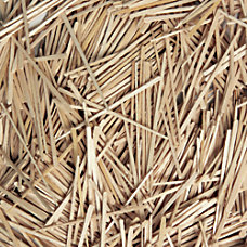 Creativity Street Wood Crafts Flat Toothpicks