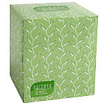 Surpass 45percent Recycled 2 Ply Facial