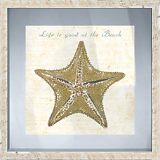 PTM Images Framed Art Starfish II