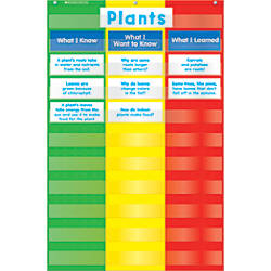 Scholastic Teacher Resources Pocket Chart 3
