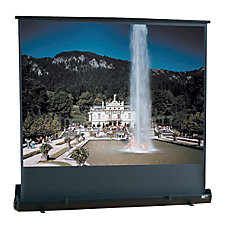 Draper Road Warrior Portable Projection Screen