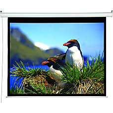 Draper Accuscreens Electric Projection Screen