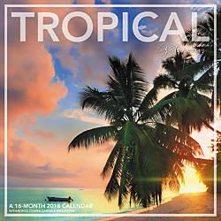 Landmark Tropical Getaway Monthly Wall Calendar