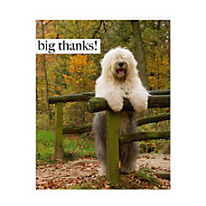 Retrospect Thank You Note Cards With