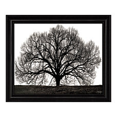 Timeless Frames The Tree Framed Art