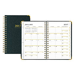 Blue Sky WeeklyMonthly Planner Carerra 3
