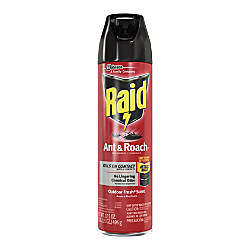 Raid AntRoach Killer Spray Spray Kills