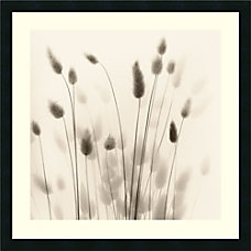 Amanti Art Italian Tall Grass No