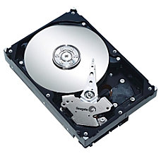 Seagate Barracuda 35 SATA300 Internal Hard