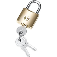 Tryten Technologies 25Mm Brass Padlock