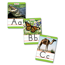 Scholastic Animals A Z 18 x