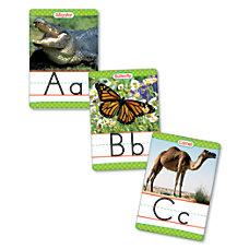 Scholastic Animals A Z 18 x