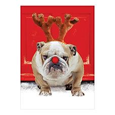 Sample Holiday Card Ecstatic