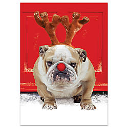 Personalized Holiday Cards Ecstatic 5 58