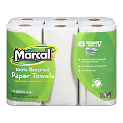 Marcal 100percent Recycled 2 Ply Quilted