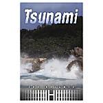 Saddleback The Heights Book Tsunami