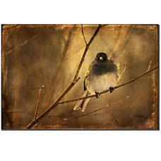 Trademark Global Backlit Birdie Being Buffeted