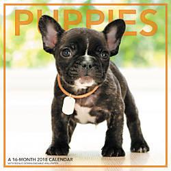 Landmark Puppies Monthly Wall Calendar 12