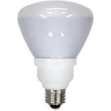GE 15 watt R30 Fluorescent Bulbs