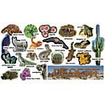 Scholastic Desert Plants Animals Mini Bulletin