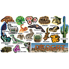 Scholastic Desert Plants Animals Mini Bulletin